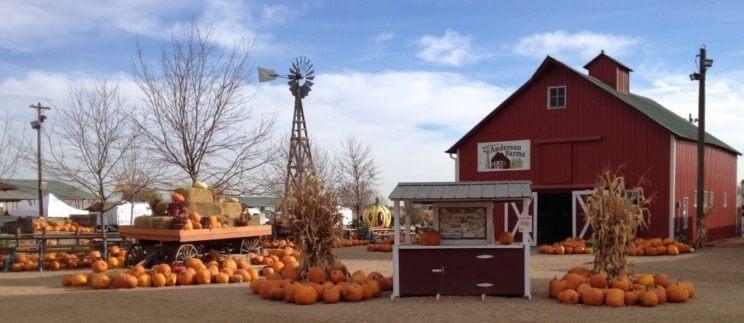 Anderson Farms   The Denver Ear
