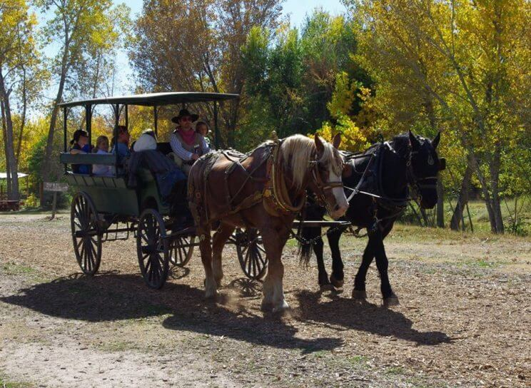 Four Mile Historic Park Free Day | The Denver Ear