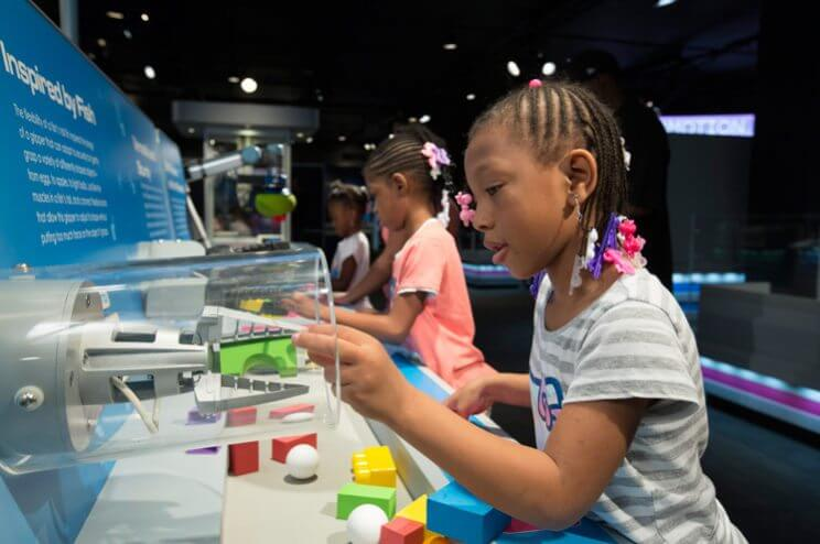 Denver Museum of Nature & Science Free Day | The Denver Ear