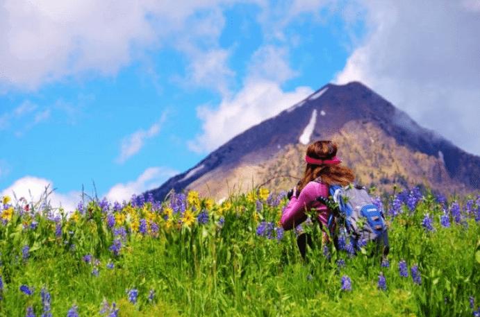 Crested Butte Wildflower Festival | The Denver Ear
