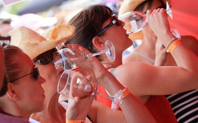 Castle Rock WineFest | The Denver Ear