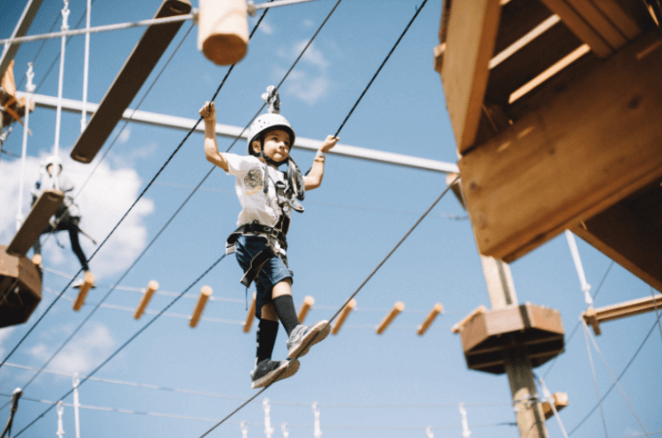 Open Air Adventure Park | The Denver Ear