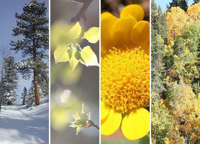 Denver Four Seasons | The Denver Ear