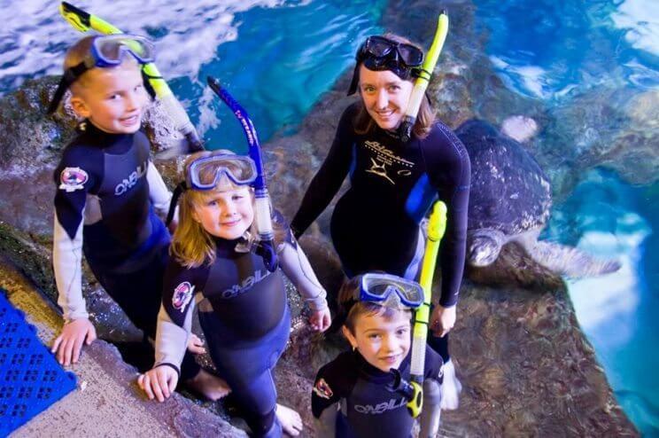 Downtown Aquarium | The Denver Ear