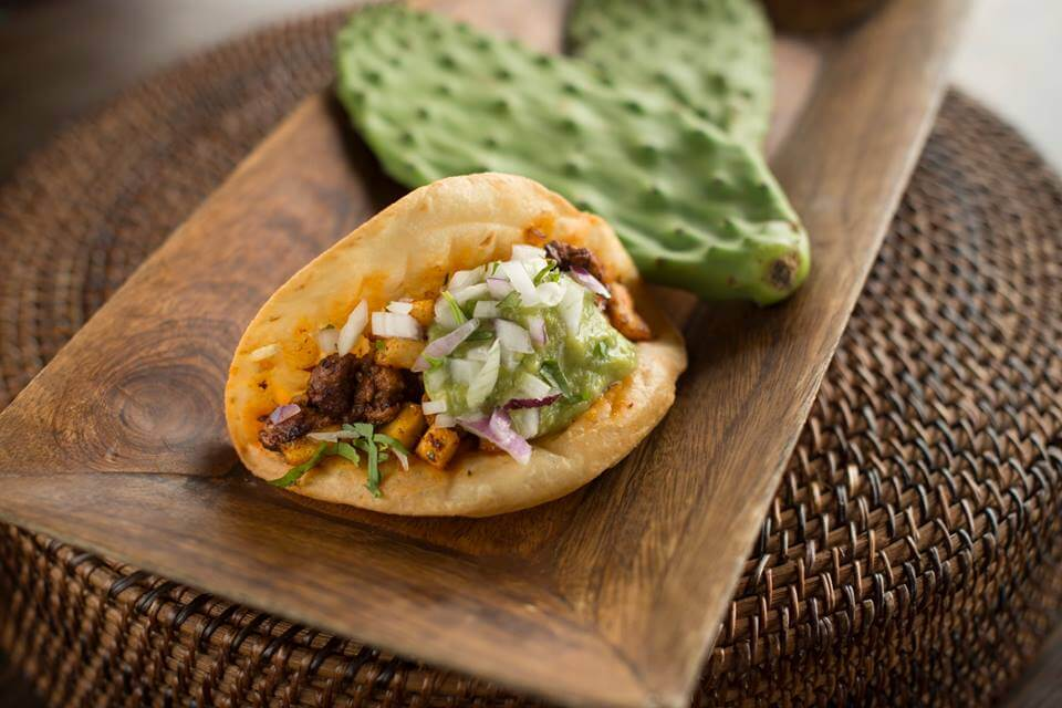 Sol Mexican Cocina | The Denver Ear
