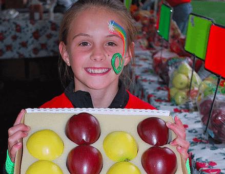 Cedaredge AppleFest | The Denver Ear