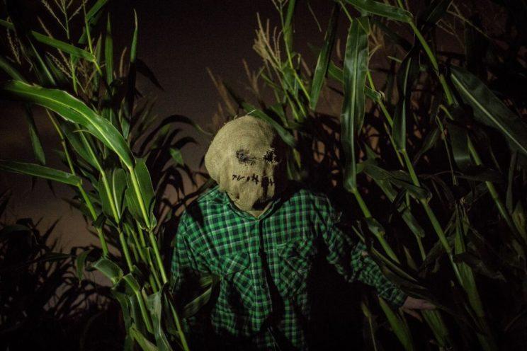 Haunted Field of Screams | The Denver Ear
