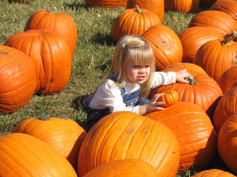 What to do with Kids in Denver this Weekend October 7th – 9th, 2016   The Denver Ear