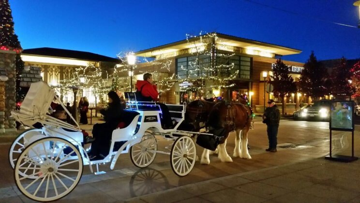 The Orchard Town Center | The Denver Ear