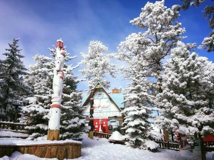 Visit the North Pole Colorado, Santa's Workshop | The Denver Ear
