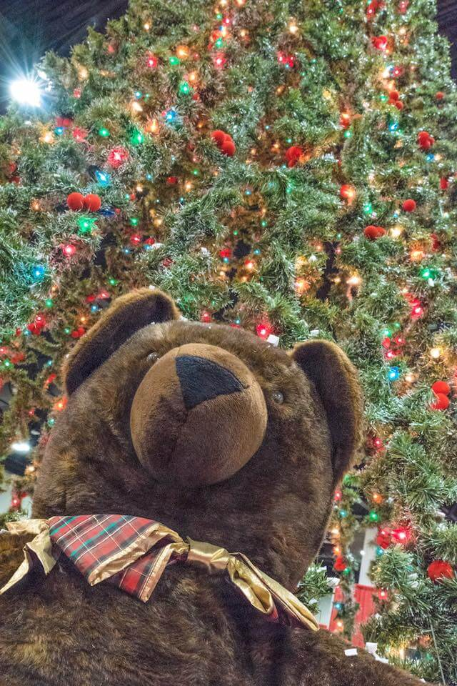 Holiday Food & Gift Festival | Colorado Convention Center | The Denver Ear