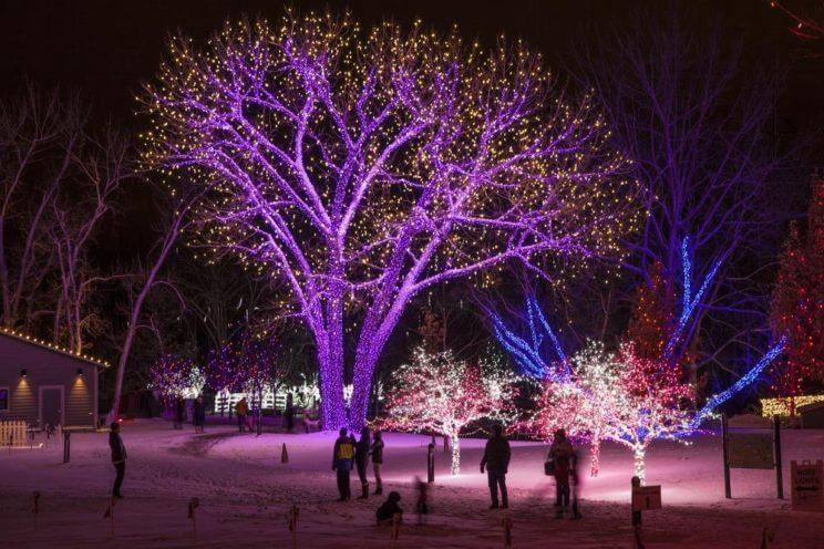 A Hudson Christmas | Hudson Gardens Event Center | The Denver Ear