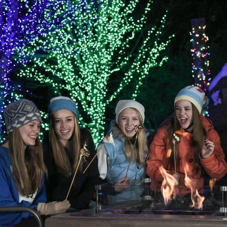 Winter on the Mountain | Glenwood Caverns Adventure Park | The Denver Ear