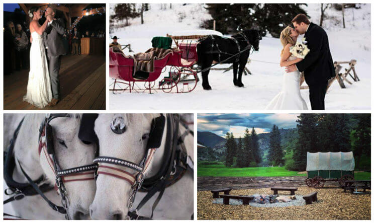 Bearcat Stables Wedding | The Denver Ear