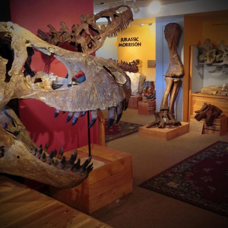 Morrison Natural History Museum | The Denver Ear