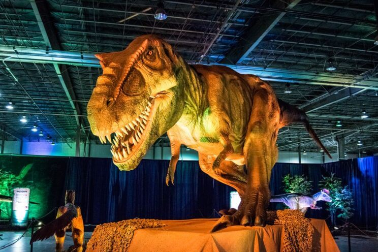 DISCOVER THE DINOSAURS UNLEASHED! | The Denver Ear