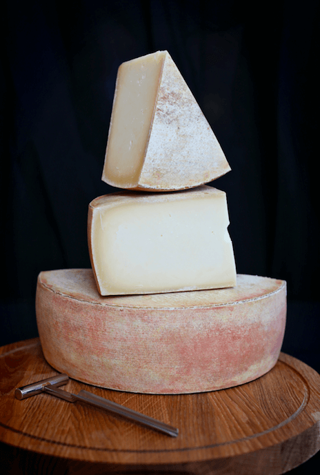 Denver's Festival of Cheese & Cheese Sale | The Denver Ear