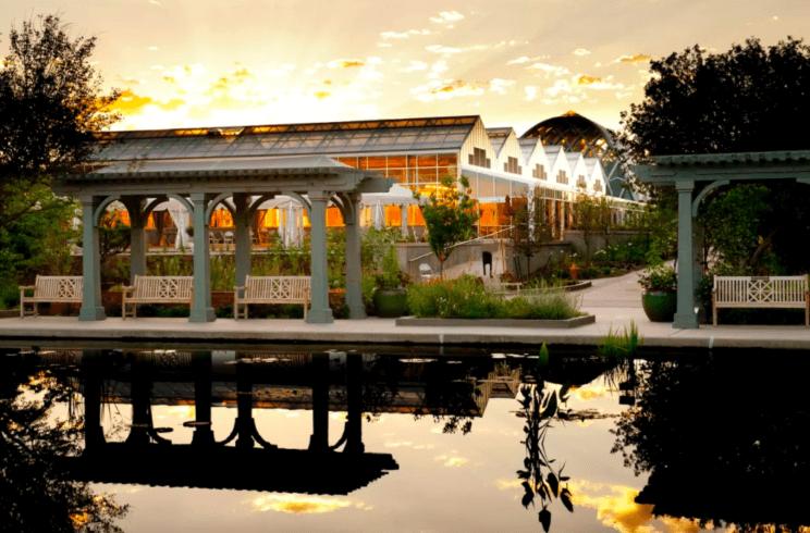 Denver Botanic Gardens   The Denver Ear