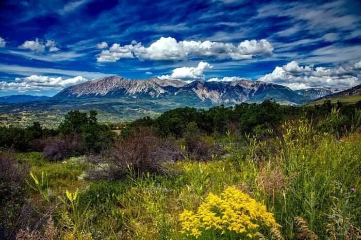 Wildflowers and Waterfalls: Amazing Spring Hikes in Colorado | The Denver Ear