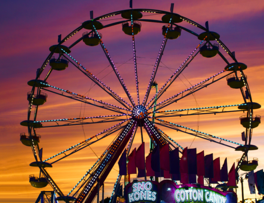 Denver County Fair | The Denver Ear