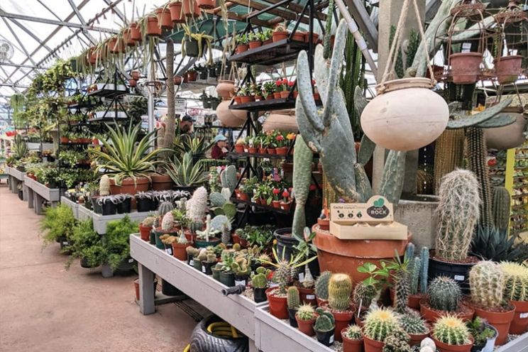 Nick's Garden Center & Farm Market | Denver Garden Centers