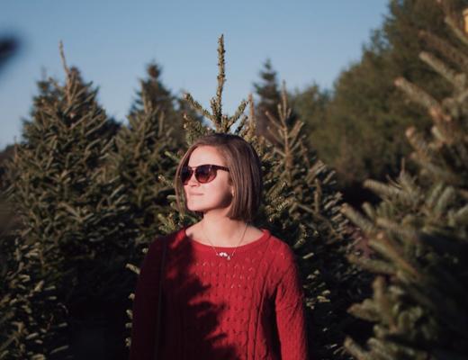 Christmas Tree Farms Denver
